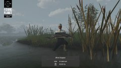 Nice Fish.jpg