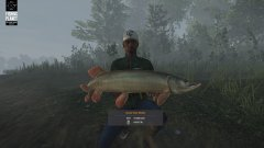 FishingPlanet_20180517224119.jpg