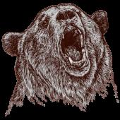 PH_Bear