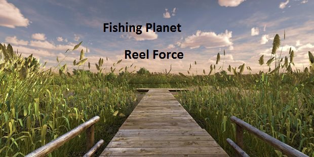 Reel Force