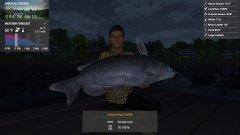 Uni Blue Catfish.jpg